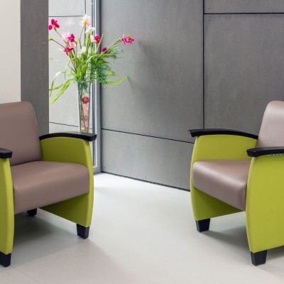 Domus Club Chairs